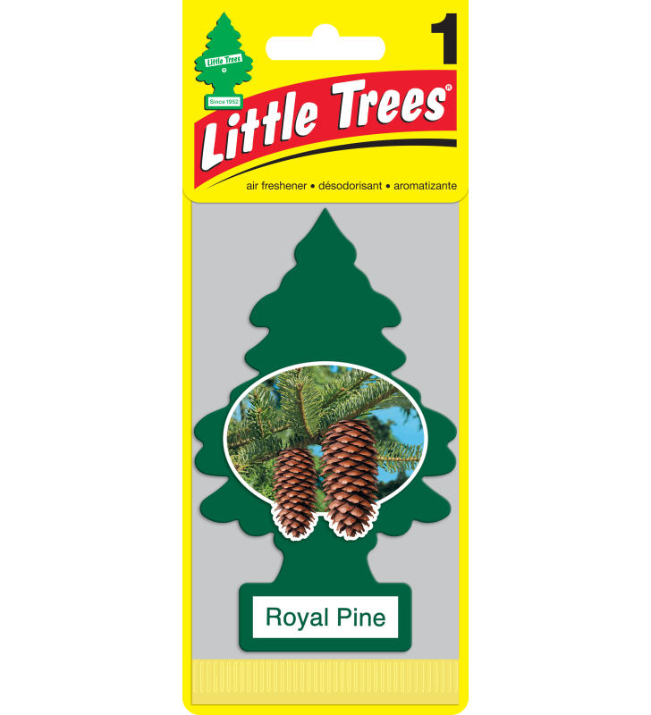 Little Trees - Royal Pine (1 pack)