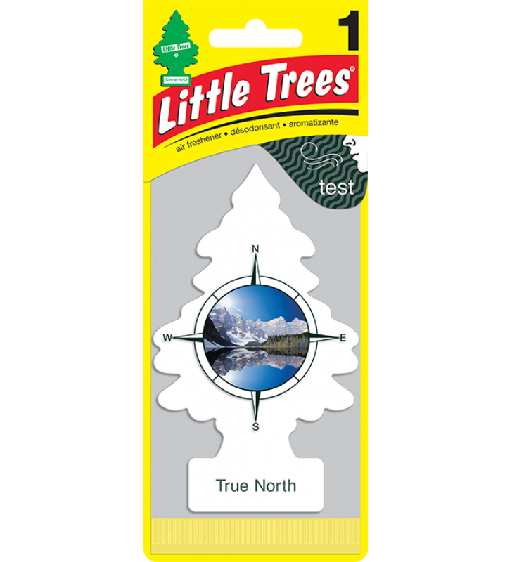 Little Trees - True North (1 pack)